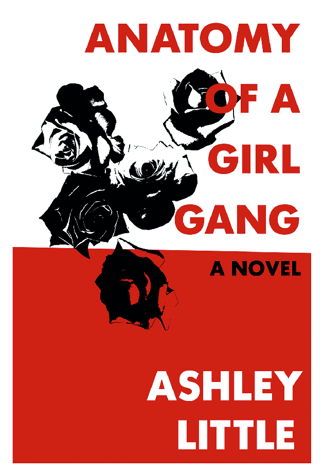 Book Review Anatomy Of A Girl Gang Fox On An Island